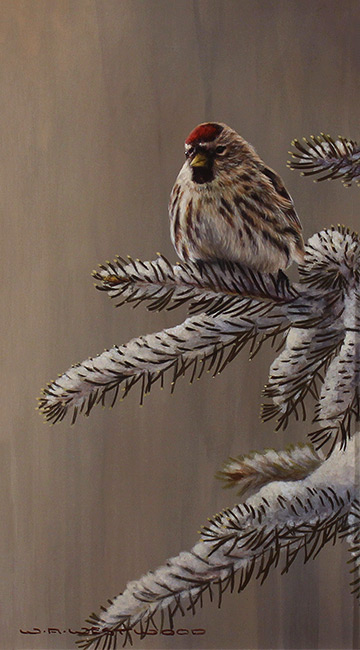 Wayne Westwood, Original oil painting on panel, Forest Frost, Redpoll in Winter  No frame image. Click to enlarge