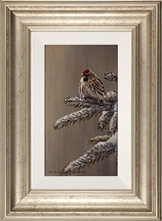 Wayne Westwood, Original oil painting on panel, Forest Frost, Redpoll in Winter  Medium image. Click to enlarge