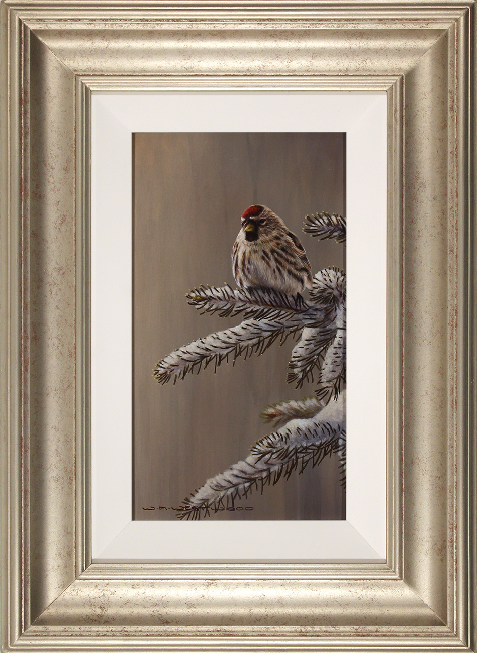 Wayne Westwood, Original oil painting on panel, Forest Frost, Redpoll in Winter  Click to enlarge