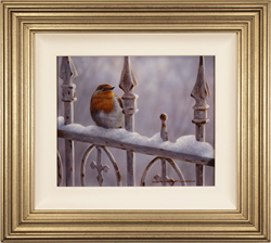 Wayne Westwood, Original oil painting on panel, Winter Robin