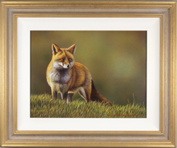 Wayne Westwood, Original oil painting on panel, The Fox