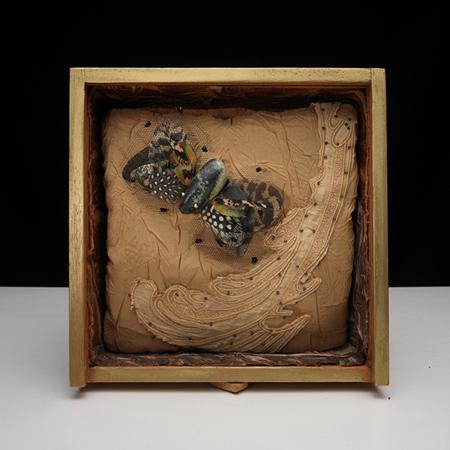 A Solo Exhibition by Carolina Whitaker